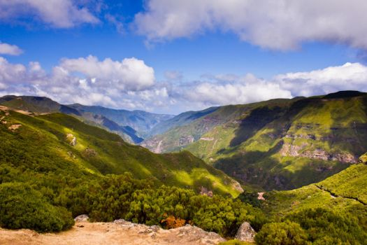 Green valley in Madeira by Jikul