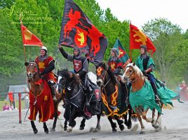 Jousting 53 by JullelinPhotography