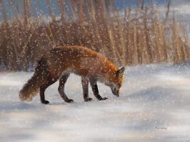 Fox in the snow by Kansey20