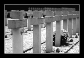 polish war graves by 21711