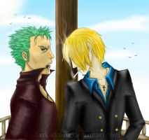 .:: Zoro and Sanji ::. by Dark-Skadia