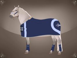 BRls Dynamo stable tack by BRls-love-is-MY-Live