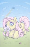Fluttersketch by cow41087