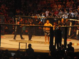 Cain Velasquez UFC 110 by Shame-On-The-Night