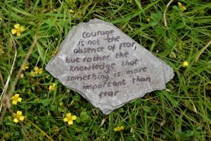 Courage Through Fear by Rhiallom