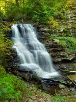 Ricketts Glen State Park 60 by Dracoart-Stock