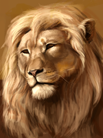 Lion study by Eliminate