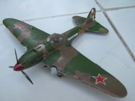 IL2 Sturmovik Front View by pete7868
