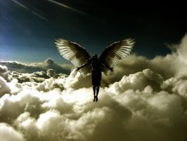flight of an angel... by Afrinaz