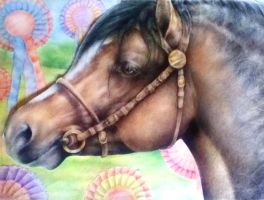 The Showman - Barwoods Hector - Colour Pencil by MissTangshan95