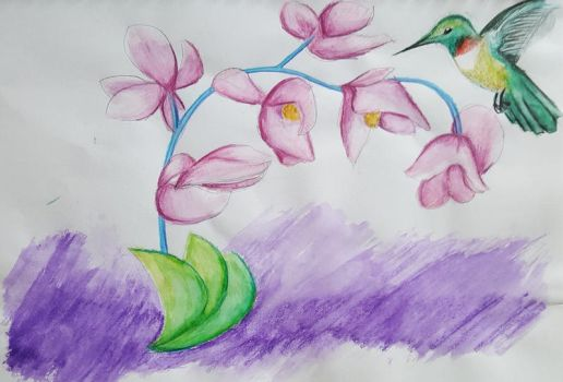 Orchid and hummingbird by Nefa-Aria