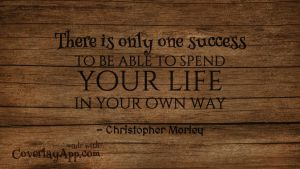 There Is Only One Success - Quote by vhartikainen