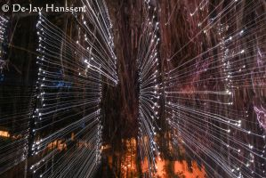 Slow Shutter and Zoom Play by HanssenPhotography