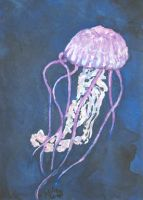 ACEO - Purple-Striped Jelly by Catamount