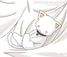 White Cat by AmiYuki