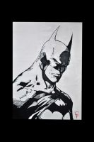 Batman 50x70 Acrilic Painting by galex89