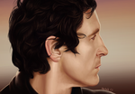 12 Paul McGann portrait with HD timelapse video by harbek