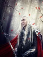 Warrior's Soul (Thranduil) by Celtica-Harmony