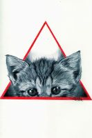 Triangle Cat by Cindy-R