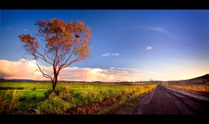 Tilgonda Road by dannyp5000
