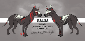 Kaina Reference Sheet by Disoxyde