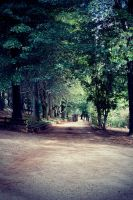 Pathway by Jessicaphoto