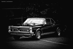 1967 Pontiac GTO Black/White by AmericanMuscle
