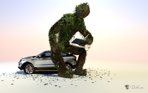 The Tree that Sat on our Car by TheDuckCow