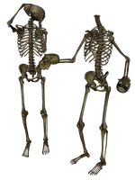 Skeleton - Head Trade 4- PNG by markopolio-stock