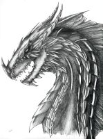 Dragon Portrait by Tiramora