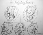 The Hedgehog Family by Sonar15