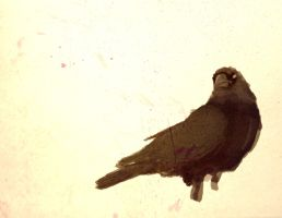 Crow - Speed painting by thedustud