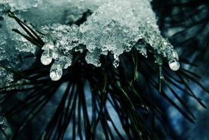 icicles by splatter-confessions