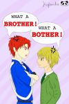 What a Brother! What a Bother! book cover by Lil-Miss-Tiny