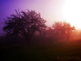 One morning ... by Andenne