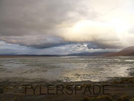 Stranger Than Paradise by Tylerspade