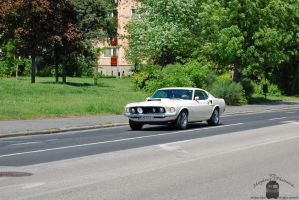 Ford Mustang by morpheus880223