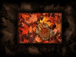 Pumpkin back Toad Background by TheDarkestwolf