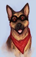 Dogmeat by Lycisca