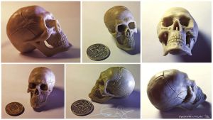 Skull - plasticine by fear-sAs
