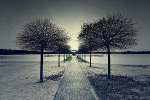Winter am See by mflow