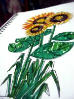 Solar Flower Sunflower by danum