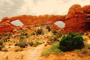 North and South Windows Arches by houstonryan
