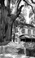 Southern Gothic by juliaharrison