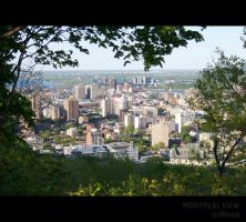 Montreal View 2 by Rixou