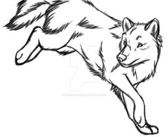 Just a Wolf Sketch by DracoFeathers