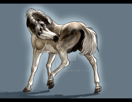 Balto - Mini commish for MuchasBellas by BH-Stables