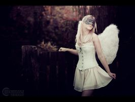 Angel IV by RemusSirion