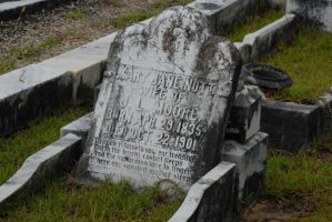 Taylor Jackson Cemetery 02 by LinzStock