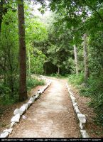 Nature Stock 020 - Path by sabrine-nature-stock